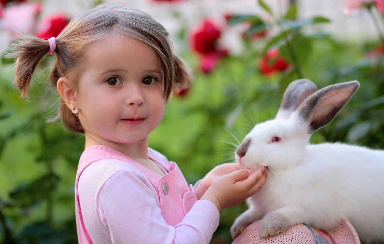 Czy żywi się króliki? Jakie zboże dla królików?